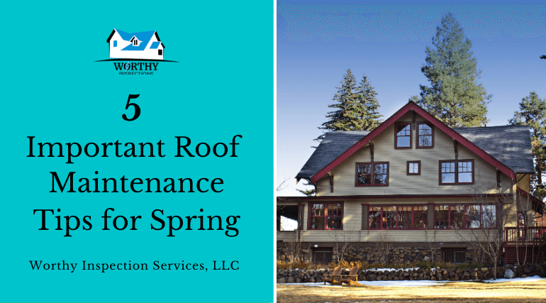 5 Important Roof Maintenance Tips for Spring